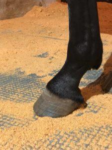TDJ Isohorsmat - Undgå huller til beton i din hesteboks